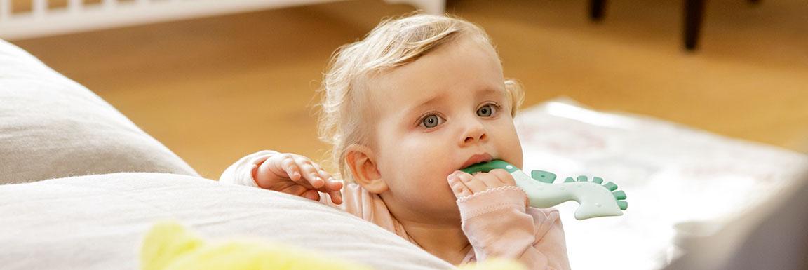 Higiene dental y mordedores